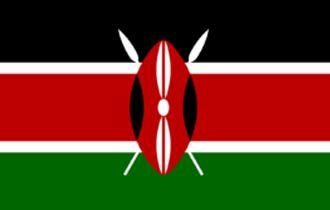肯尼亚签证办理流程展会商务签证服务