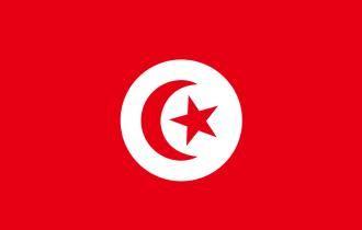 突尼斯签证办理流程展会商务签证服务