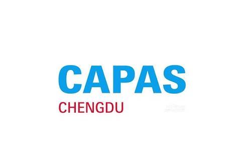 2021成都汽车零配件及售后服务展览会CAPAS
