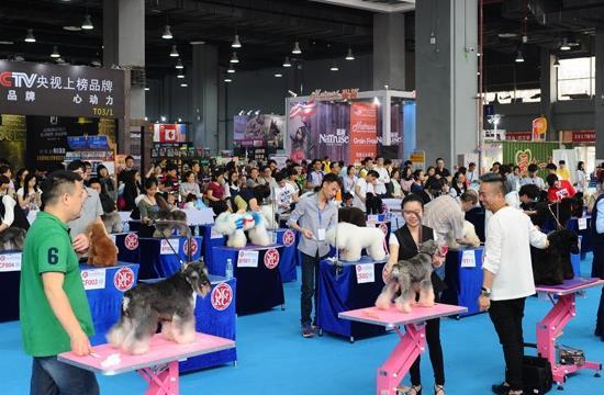 2021重庆国际宠物展览会CPF(www.828i.com)