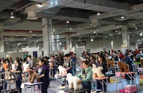 2021广西国际宠物博览会(www.828i.com)