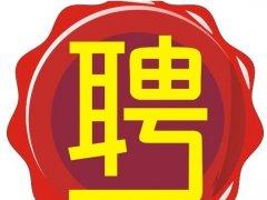 中国兼职网的一些具有真实性的招聘