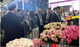 2022广州花卉博览会(www.828i.com)