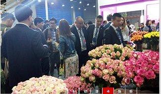 2022第14届广州国际花卉盆栽及花店花园用品展览会(www.828i.com)